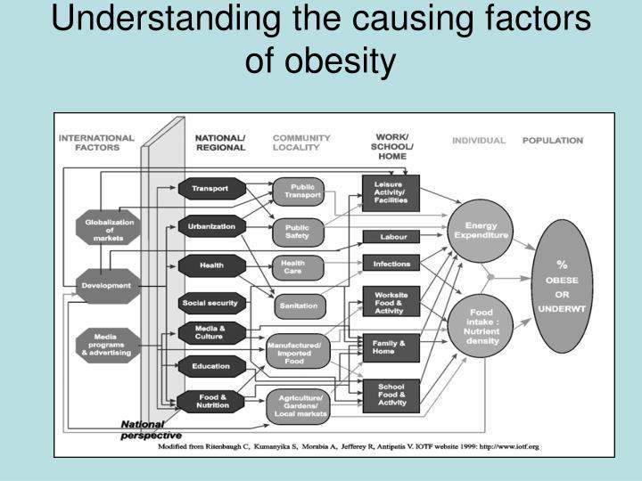 Understanding the causing factors of obesity