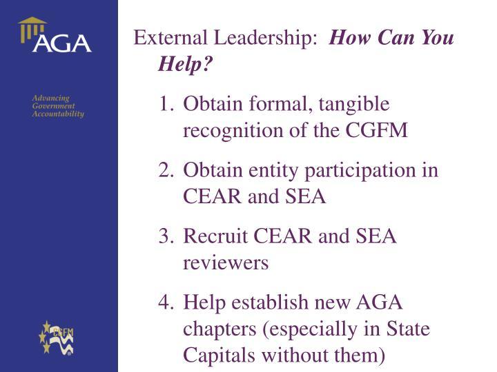 External Leadership:
