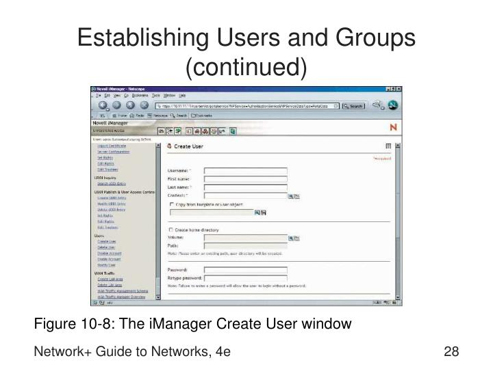 Establishing Users and Groups (continued)