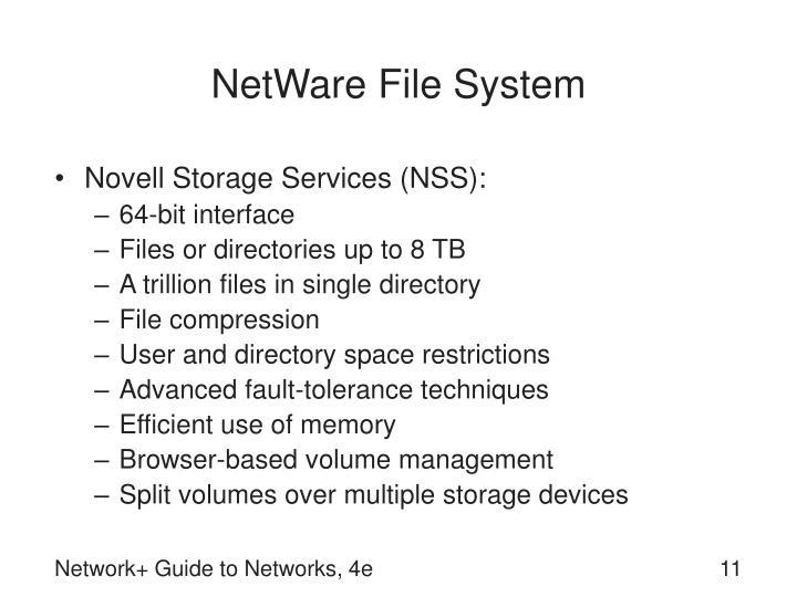 NetWare File System