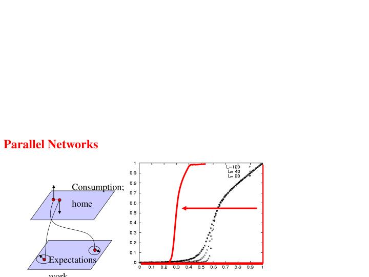 Parallel Networks