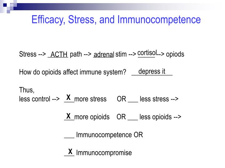 Efficacy, Stress, and Immunocompetence
