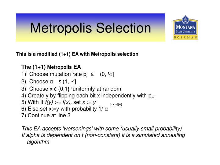 This is a modified (1+1) EA with Metropolis selection