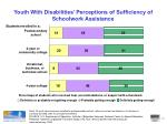 youth with disabilities perceptions of sufficiency of schoolwork assistance