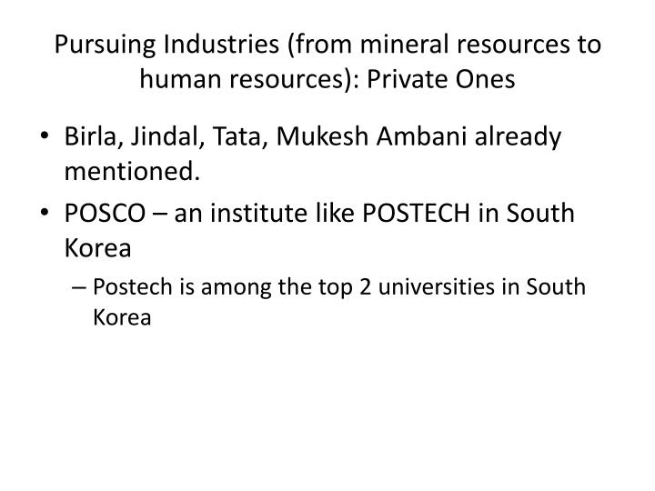 Pursuing Industries (from mineral resources to human resources): Private Ones