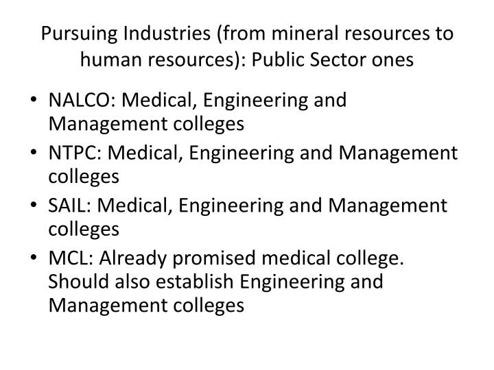Pursuing Industries (from mineral resources to human resources): Public Sector ones