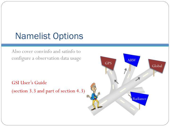Namelist Options