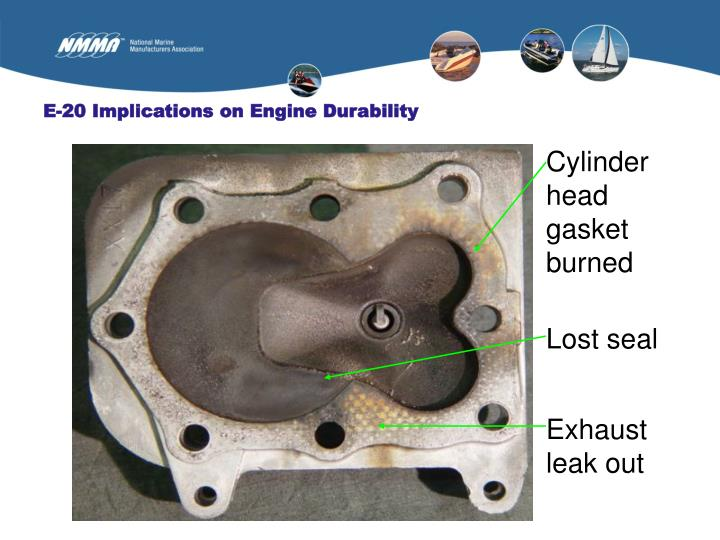E-20 Implications on Engine Durability
