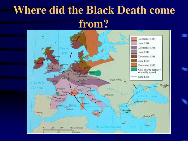 Where did the Black Death come from?