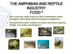 the amphibian and reptile industry food 91