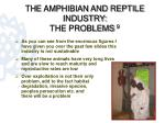the amphibian and reptile industry the problems 9