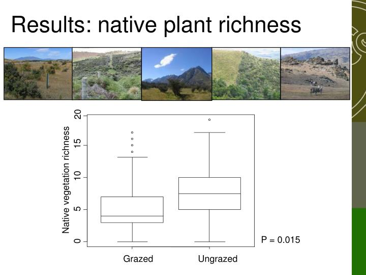 Results: native plant richness