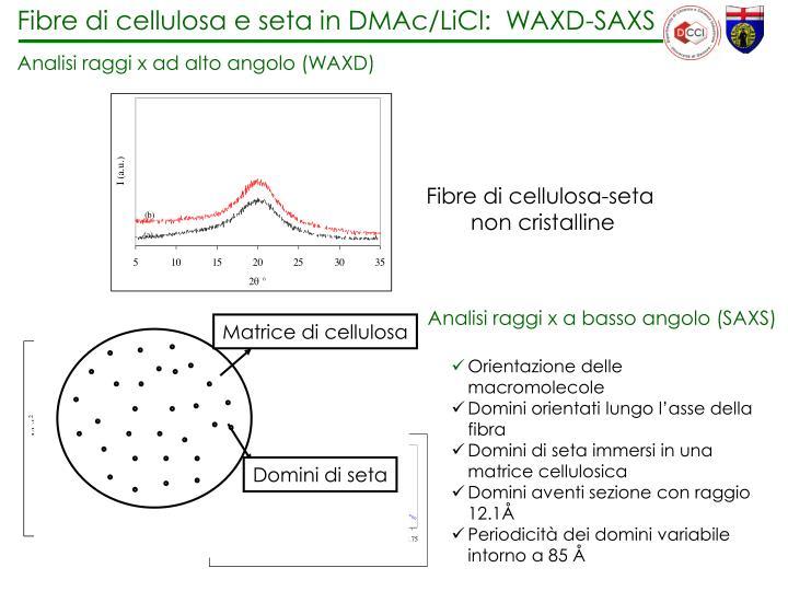 Fibre di cellulosa e seta in DMAc/LiCl:  WAXD-SAXS