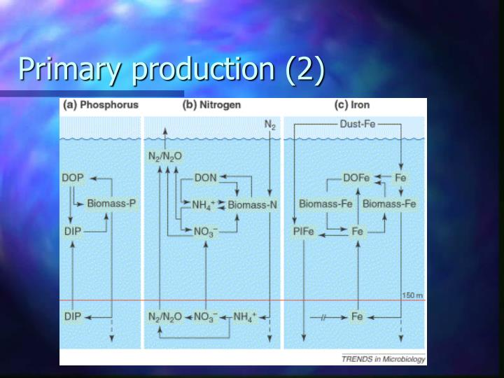 Primary production (2)