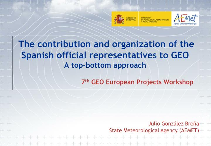 The contribution and organization of the Spanish official representatives to GEO