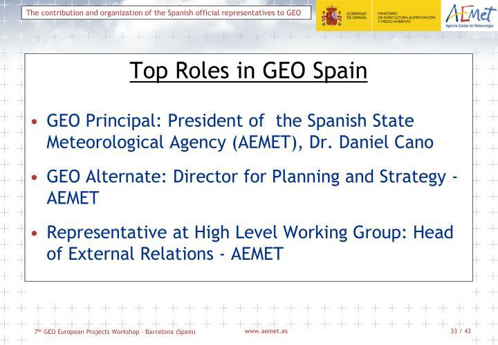 Top Roles in GEO Spain
