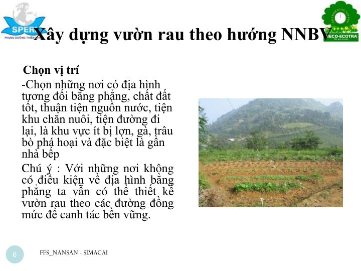 Xây dựng vườn rau theo hướng NNBV