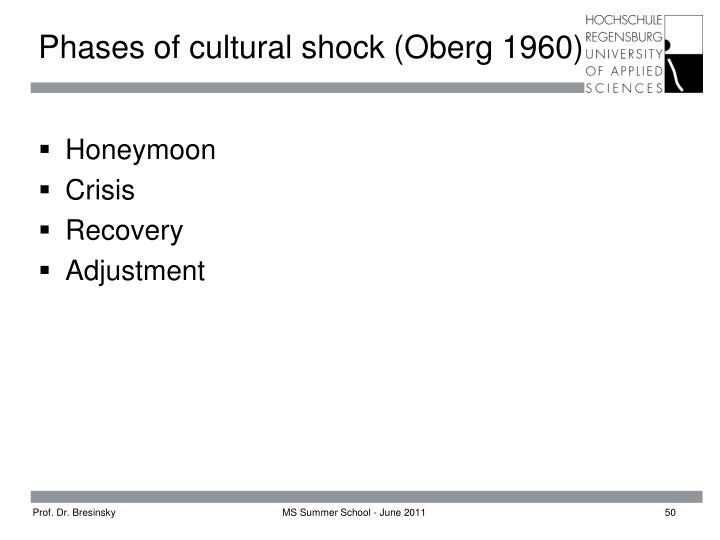 Phases of cultural shock (Oberg 1960)
