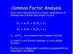 common factor analysis