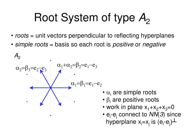 Root System of type