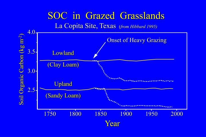 SOC  in  Grazed  Grasslands