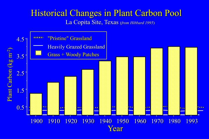 Historical Changes in Plant Carbon Pool