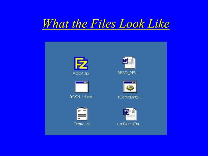 What the Files Look Like