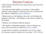 enzyme catalysts1