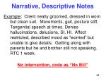 narrative descriptive notes