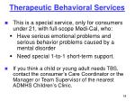 therapeutic behavioral services