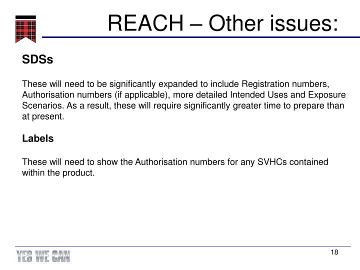 REACH – Other issues:
