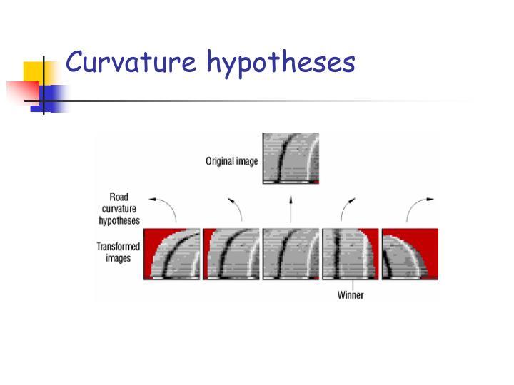 Curvature hypotheses