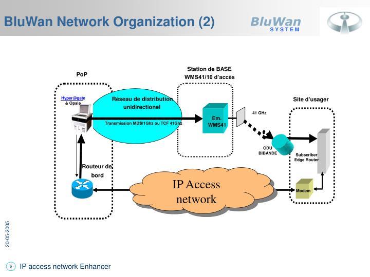 BluWan Network Organization (2)