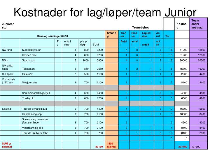 Kostnader for lag l per team junior
