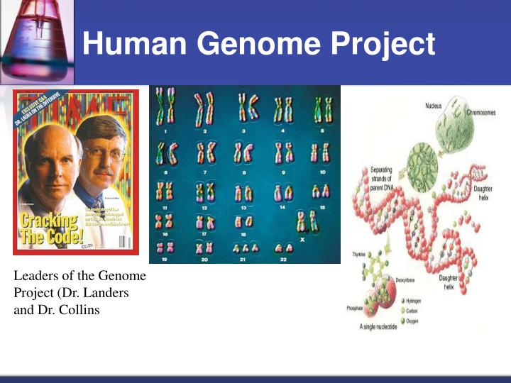 the genome project