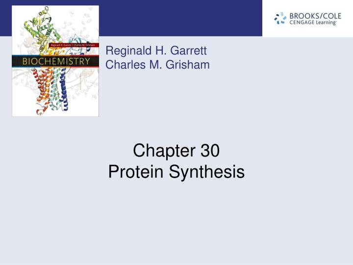 chapter 30 protein synthesis n.