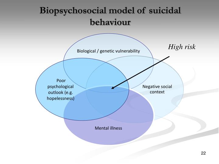 Biopsychosocial model of suicidal behaviour