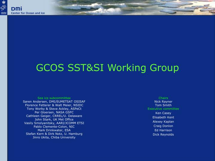 gcos sst si working group n.