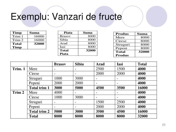 Exemplu: Vanzari de fructe