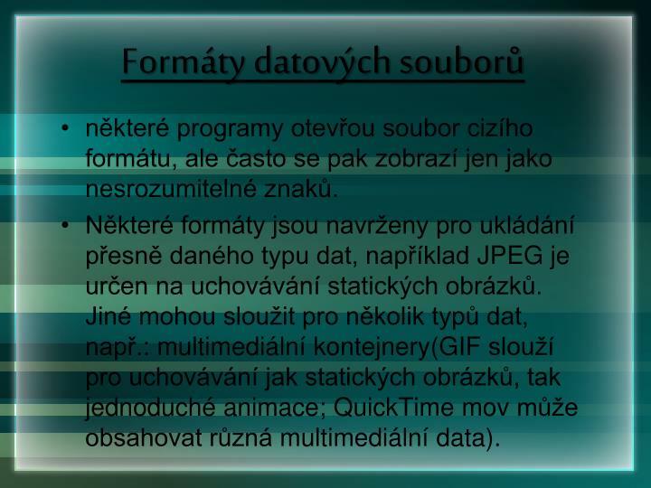 Formáty datových souborů