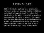 1 peter 3 18 20