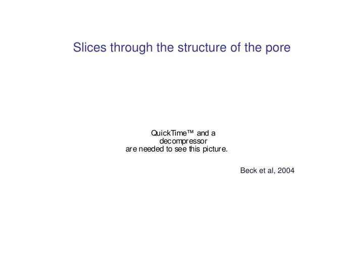 Slices through the structure of the pore