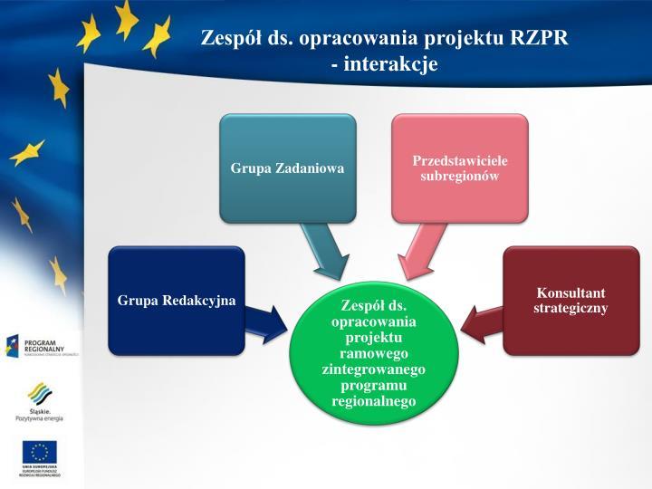Zespół ds. opracowania projektu RZPR