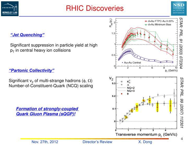 RHIC Discoveries