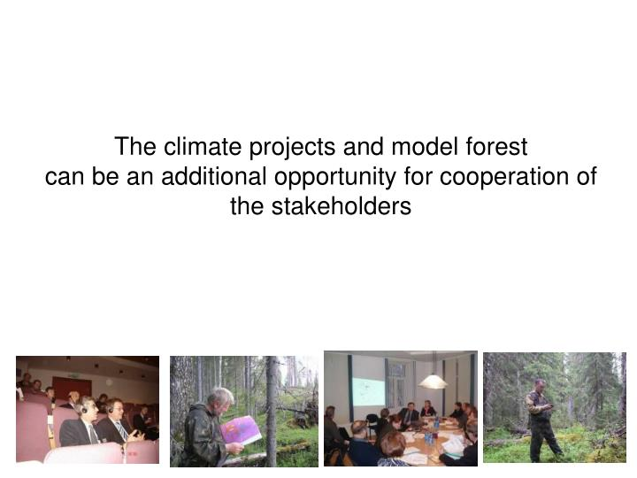 The climate projects and model forest