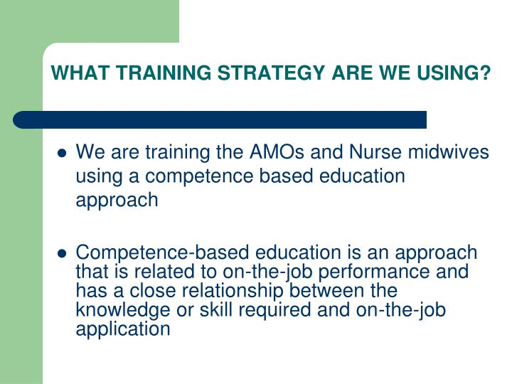 WHAT TRAINING STRATEGY ARE WE USING?