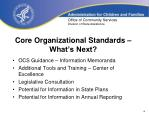 core organizational standards what s next