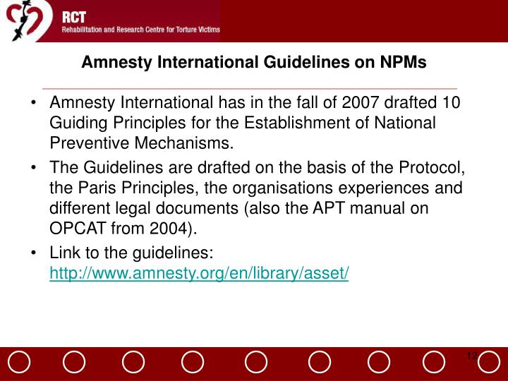 Amnesty International Guidelines on NPMs