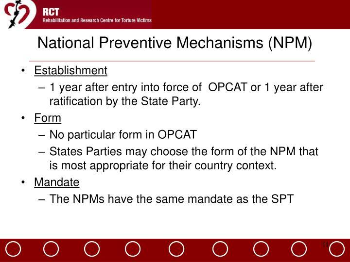 National Preventive Mechanisms (NPM)