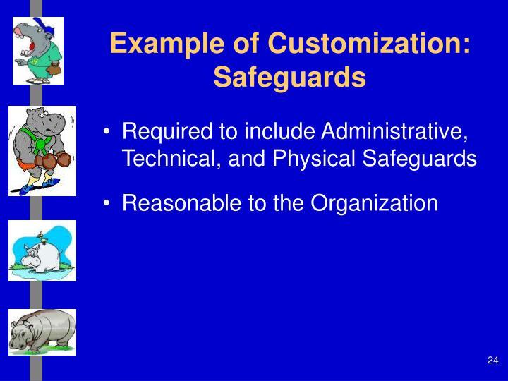 Example of Customization: Safeguards